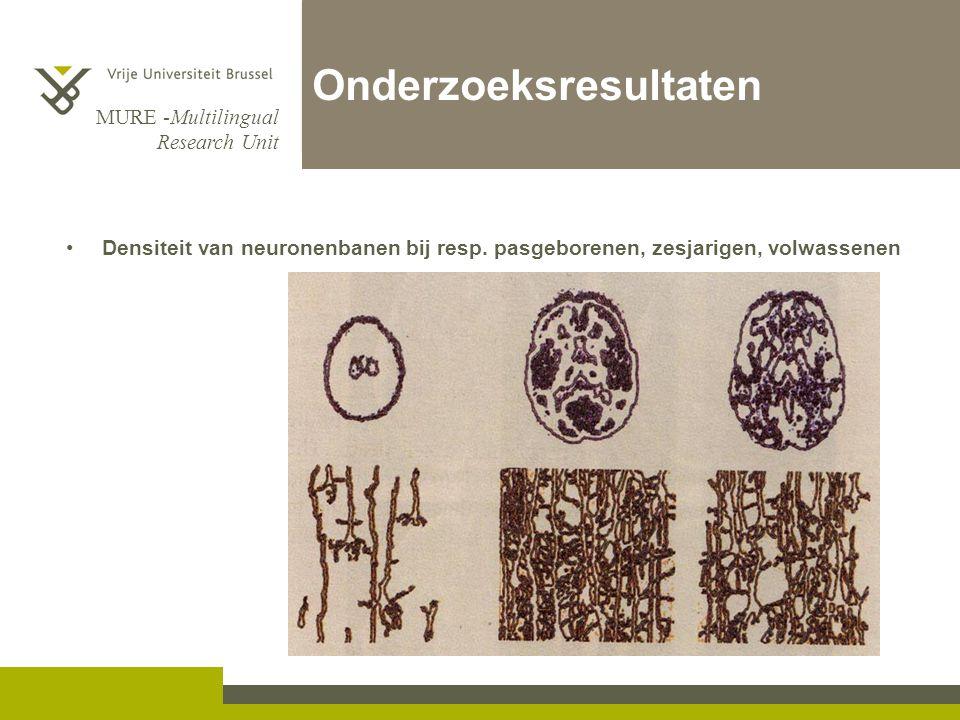 MURE -Multilingual Research Unit Onderzoeksresultaten Densiteit van neuronenbanen bij resp. pasgeborenen, zesjarigen, volwassenen