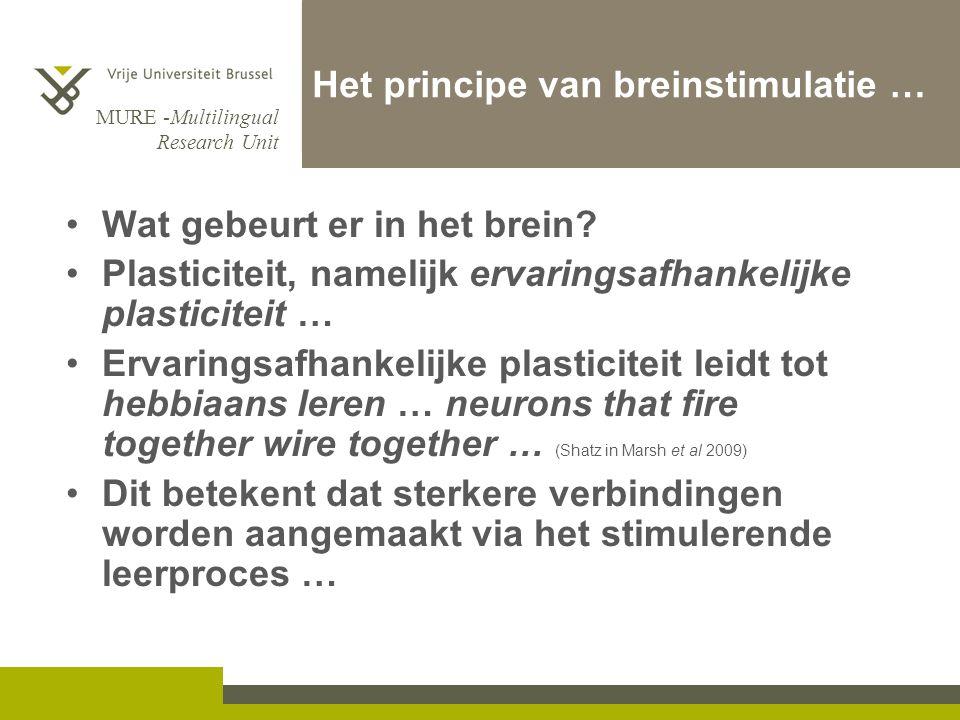 MURE -Multilingual Research Unit Het principe van breinstimulatie … Wat gebeurt er in het brein? Plasticiteit, namelijk ervaringsafhankelijke plastici