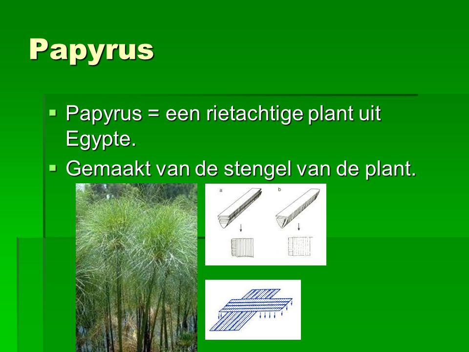 Papyrus  Papyrus = een rietachtige plant uit Egypte.  Gemaakt van de stengel van de plant.