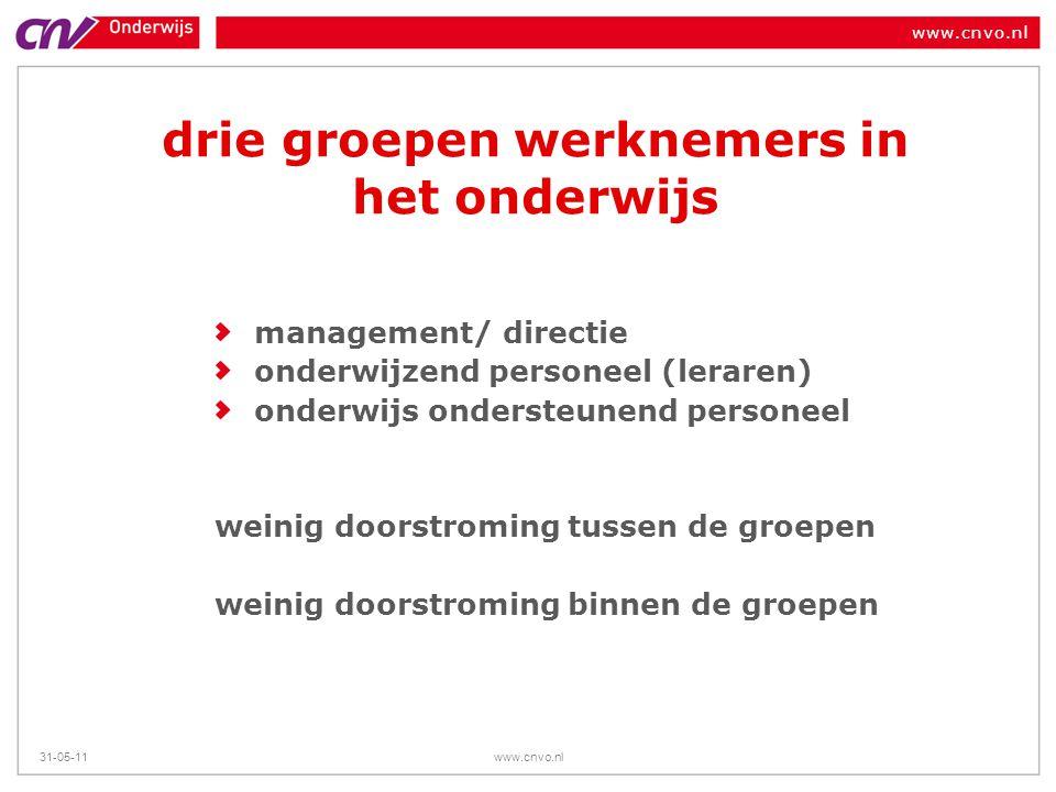 www.cnvo.nl 31-05-11www.cnvo.nl drie groepen werknemers in het onderwijs management/ directie onderwijzend personeel (leraren) onderwijs ondersteunend