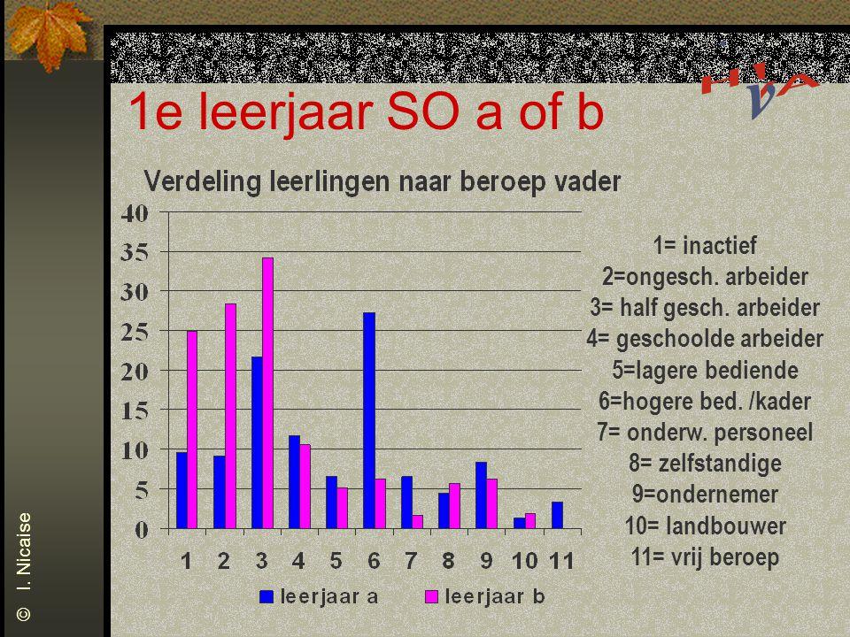 1e leerjaar SO a of b 1= inactief 2=ongesch. arbeider 3= half gesch.