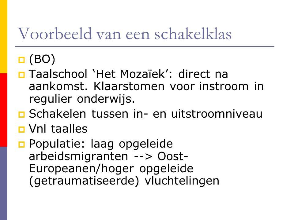 Voorbeeld van een schakelklas  (BO)  Taalschool 'Het Mozaïek': direct na aankomst. Klaarstomen voor instroom in regulier onderwijs.  Schakelen tuss