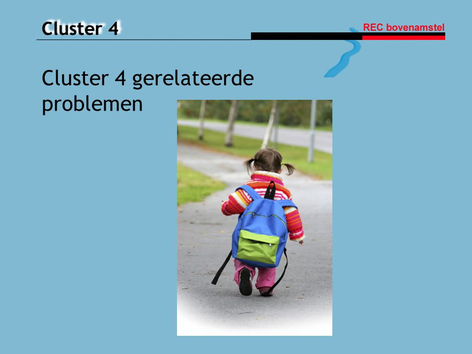 Cluster 4 gerelateerde problemen