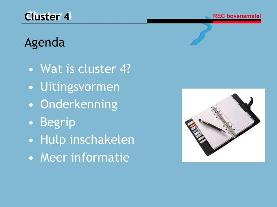 Cluster 4 Wat is cluster 4? Uitingsvormen Onderkenning Begrip Hulp inschakelen Meer informatie Agenda