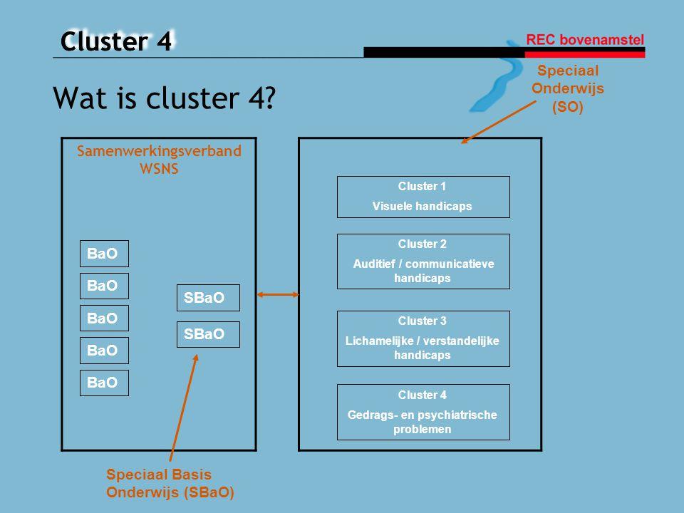 Cluster 4 Vragen?