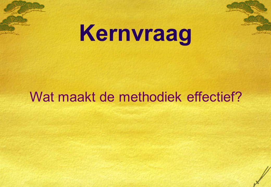 Kernvraag Wat maakt de methodiek effectief?
