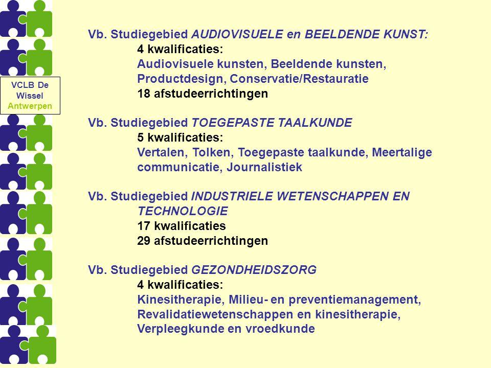 Vb. Studiegebied AUDIOVISUELE en BEELDENDE KUNST: 4 kwalificaties: Audiovisuele kunsten, Beeldende kunsten, Productdesign, Conservatie/Restauratie 18