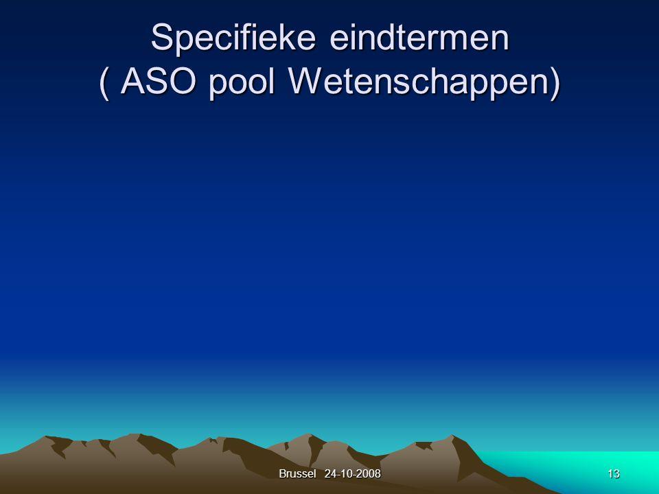 Brussel 24-10-200813 Specifieke eindtermen ( ASO pool Wetenschappen)