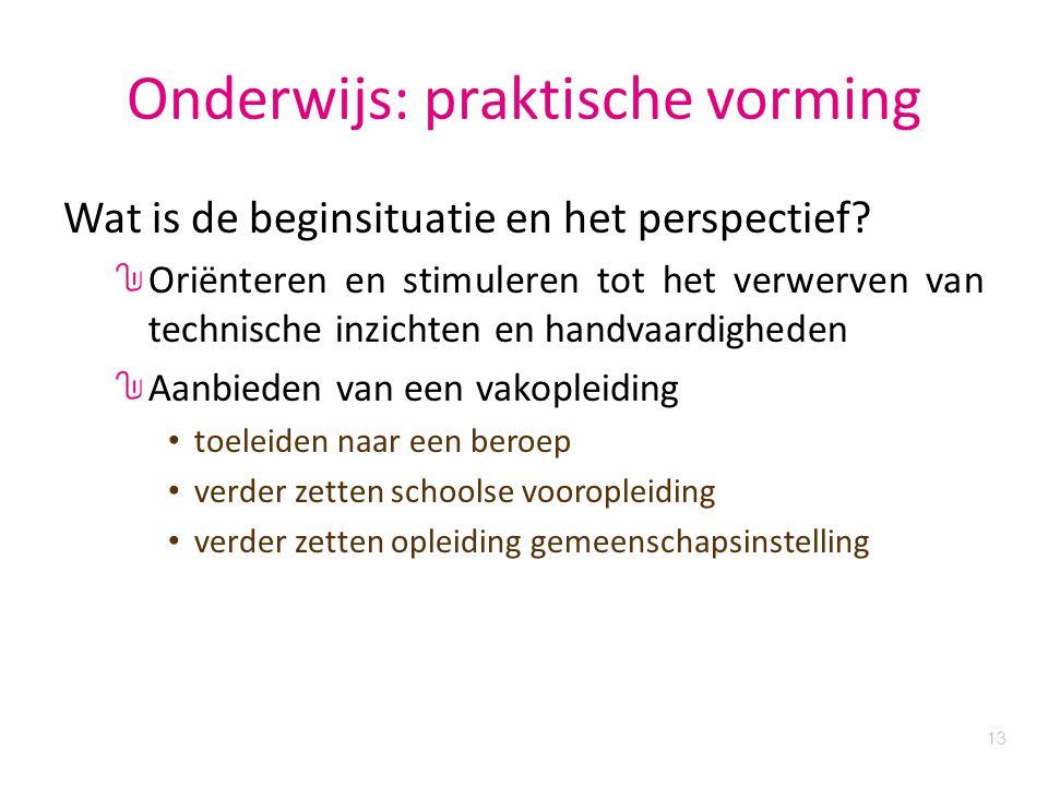 13 Onderwijs: praktische vorming Wat is de beginsituatie en het perspectief.