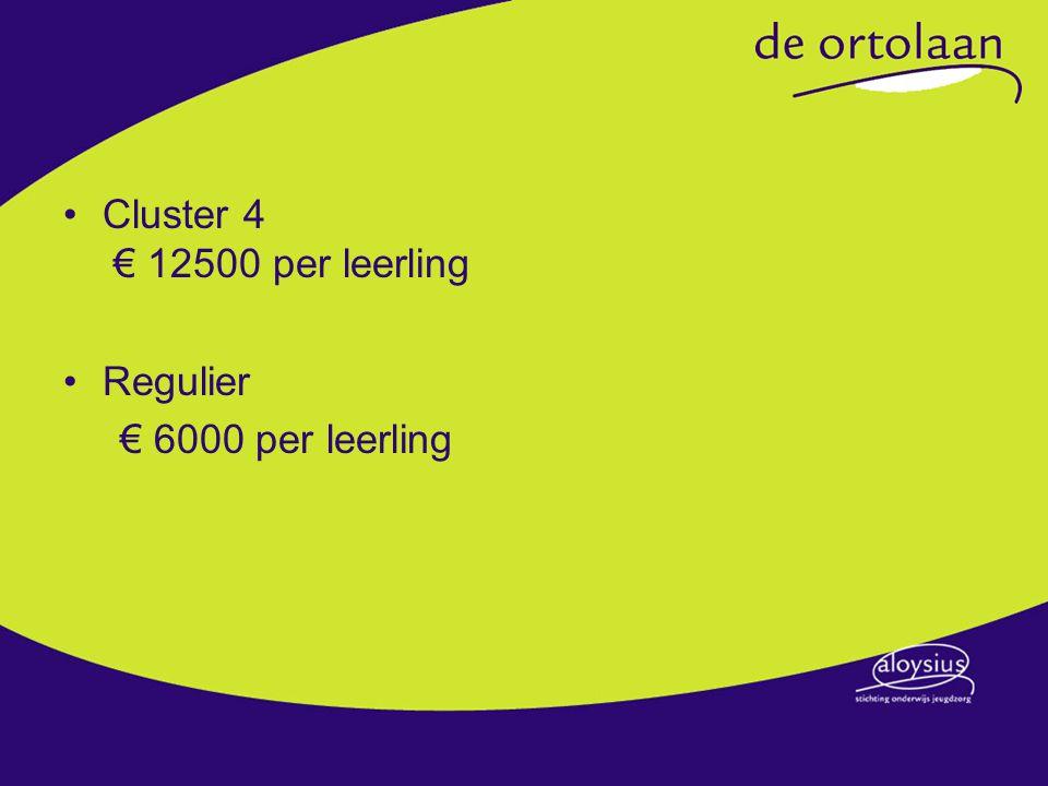 Cluster 4 € 12500 per leerling Regulier € 6000 per leerling