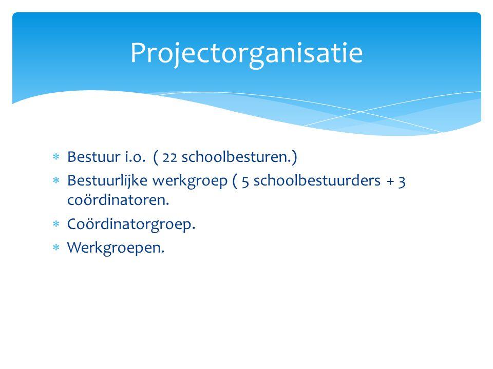  Bestuur i.o. ( 22 schoolbesturen.)  Bestuurlijke werkgroep ( 5 schoolbestuurders + 3 coördinatoren.  Coördinatorgroep.  Werkgroepen. Projectorgan