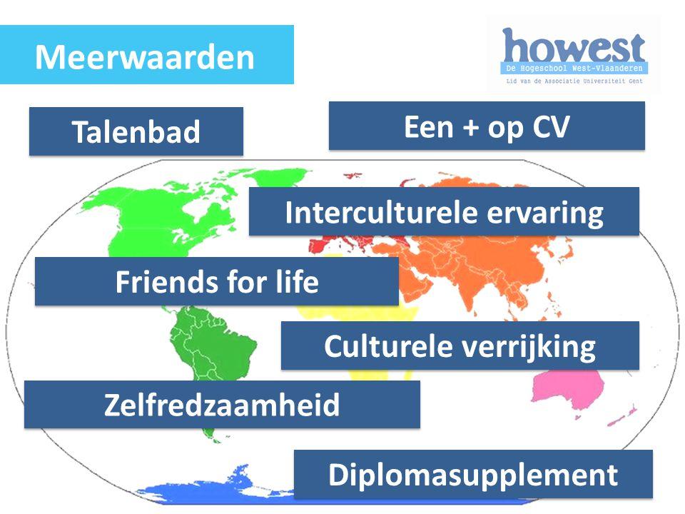 Talenbad Een + op CV Friends for life Culturele verrijking Zelfredzaamheid Diplomasupplement Interculturele ervaring Meerwaarden
