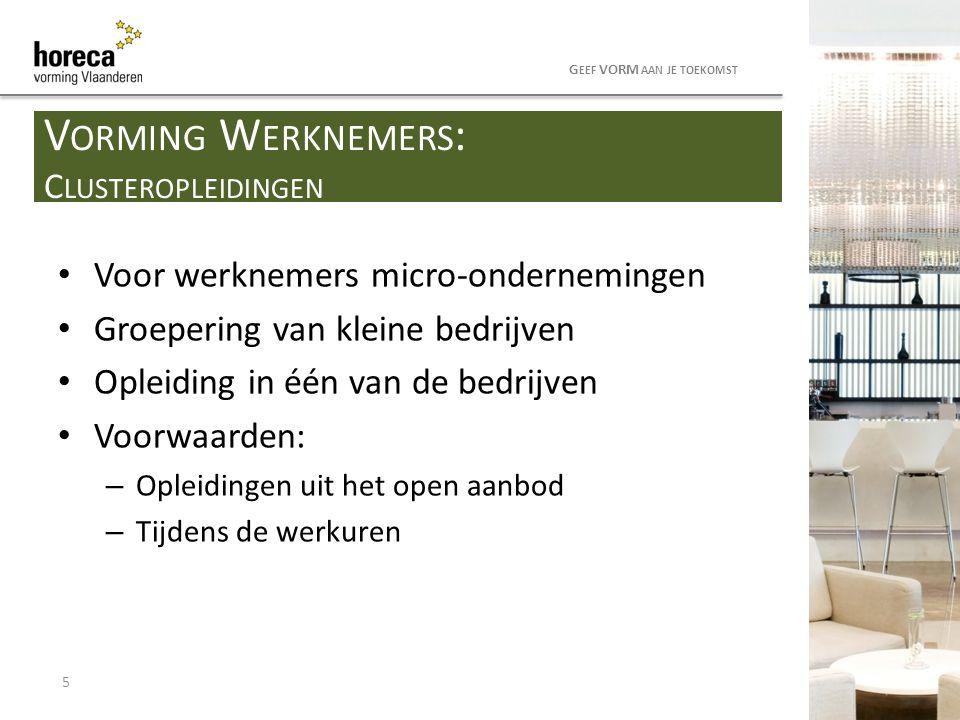 Voor werknemers micro-ondernemingen Groepering van kleine bedrijven Opleiding in één van de bedrijven Voorwaarden: – Opleidingen uit het open aanbod –
