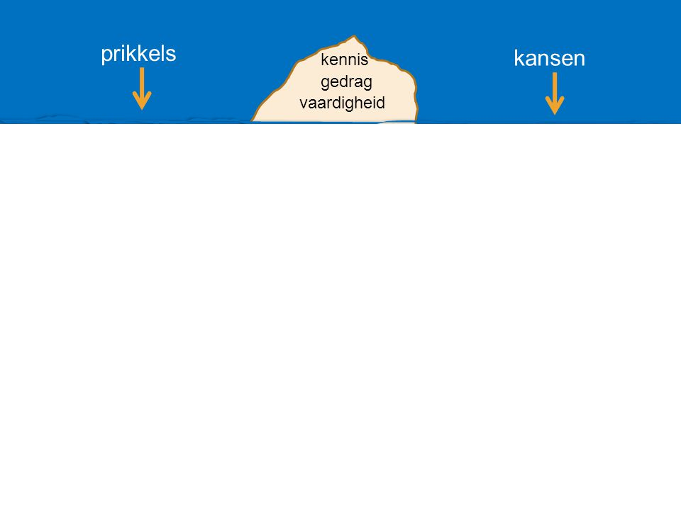 competentie vaardigheid gedrag kennis prikkels kansen leervermogen