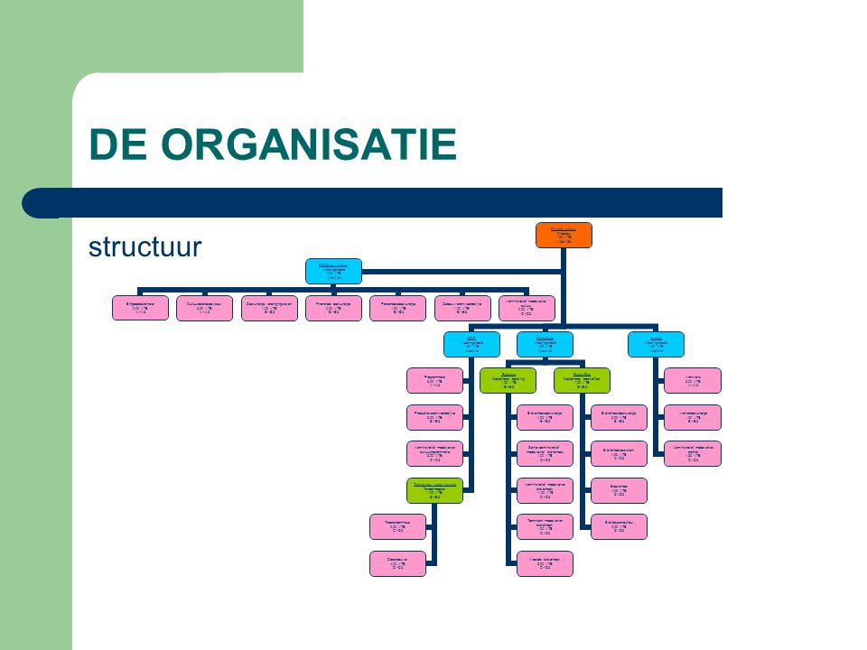 DE ORGANISATIE structuur Directie cultuur Directeur 1,00 VTE A5a-A5b 30CC Afdelingshoofd 1,00 VTE A4a-A4b Programmator 3,00 VTE A1-A3 Productieverantw