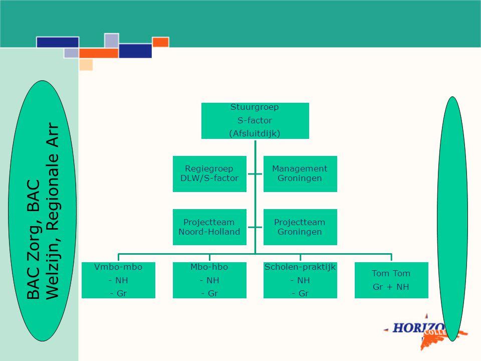 Stuurgroep S-factor (Afsluitdijk) Vmbo-mbo - NH - Gr Mbo-hbo - NH - Gr Scholen-praktijk - NH - Gr Tom Gr + NH Regiegroep DLW/S-factor Management Groningen Projectteam Noord-Holland Projectteam Groningen BAC Zorg, BAC Welzijn, Regionale Arr