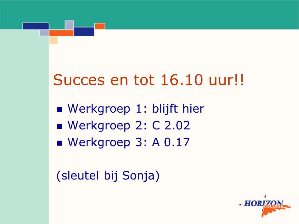 Succes en tot 16.10 uur!! Werkgroep 1: blijft hier Werkgroep 2: C 2.02 Werkgroep 3: A 0.17 (sleutel bij Sonja)