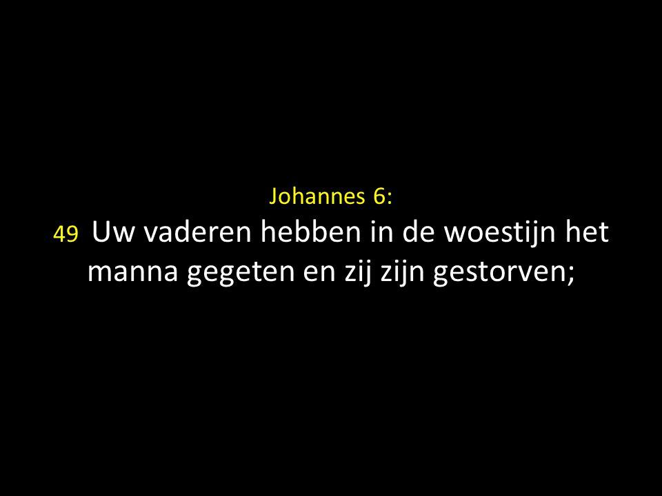 Johannes 6: 49 Uw vaderen hebben in de woestijn het manna gegeten en zij zijn gestorven;