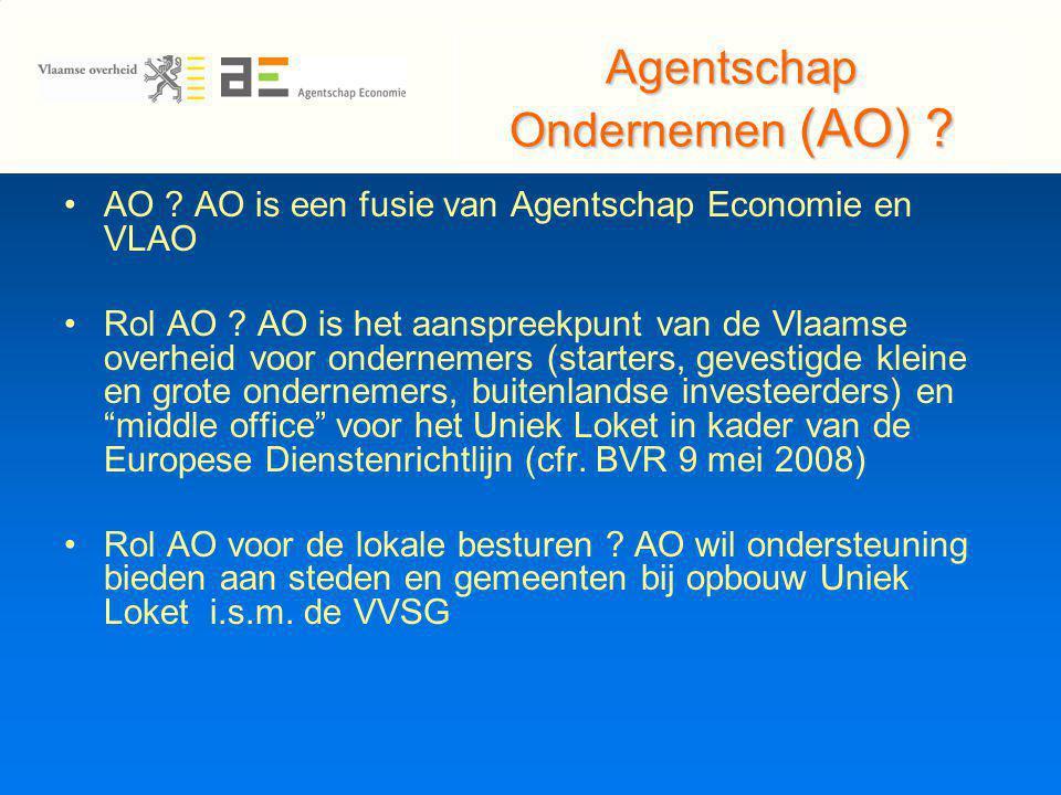 Agentschap Ondernemen (AO) . AO . AO is een fusie van Agentschap Economie en VLAO Rol AO .
