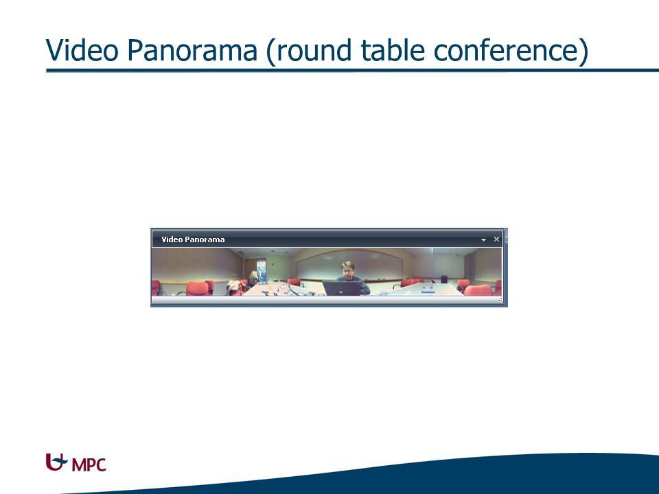 Video Panorama (round table conference)