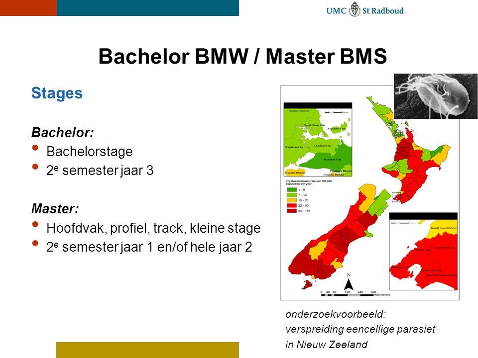 Bachelor BMW / Master BMS Stages Bachelor: Bachelorstage 2 e semester jaar 3 Master: Hoofdvak, profiel, track, kleine stage 2 e semester jaar 1 en/of