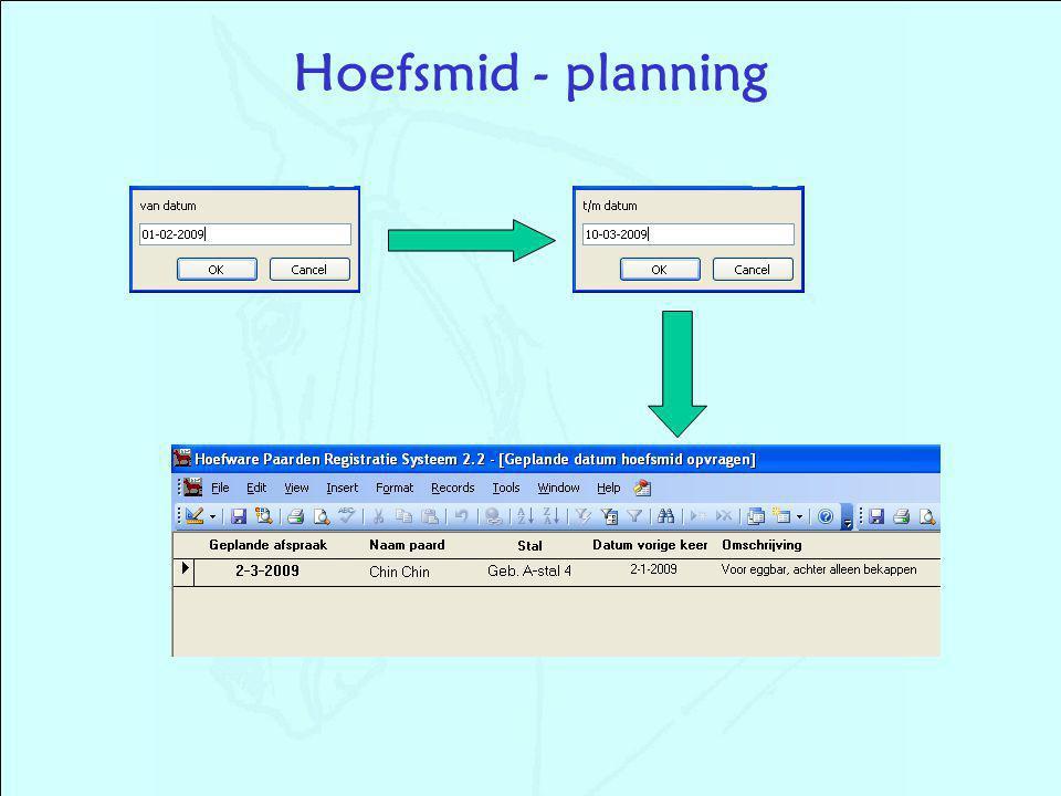 Hoefsmid - planning
