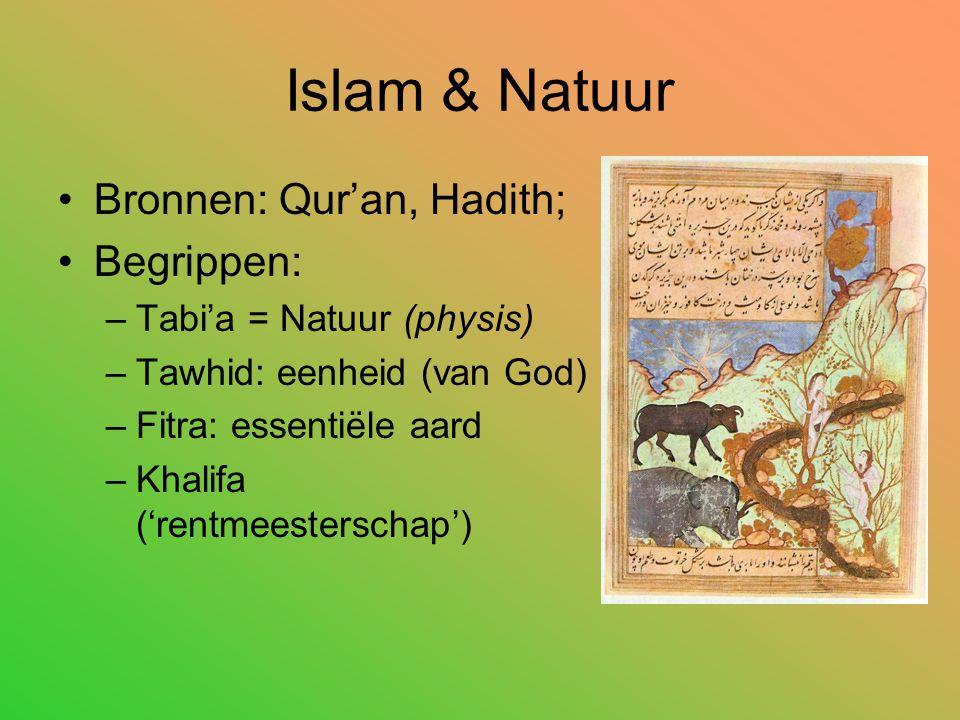 Islam & Natuur Bronnen: Qur'an, Hadith; Begrippen: –Tabi'a = Natuur (physis) –Tawhid: eenheid (van God) –Fitra: essentiële aard –Khalifa ('rentmeesterschap')
