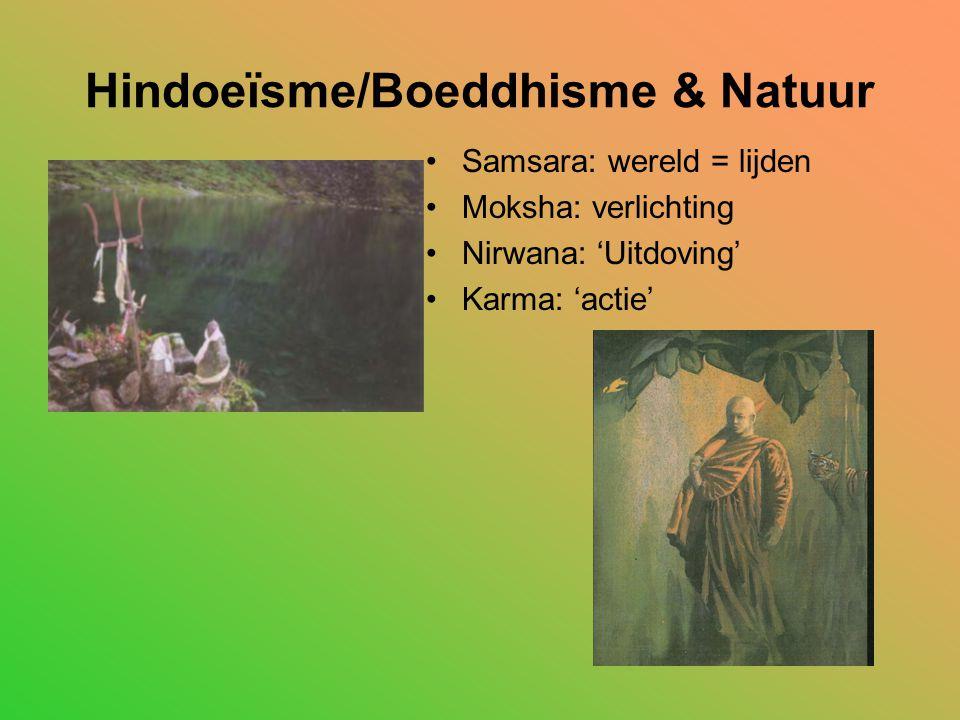 Hindoeïsme/Boeddhisme & Natuur Samsara: wereld = lijden Moksha: verlichting Nirwana: 'Uitdoving' Karma: 'actie'