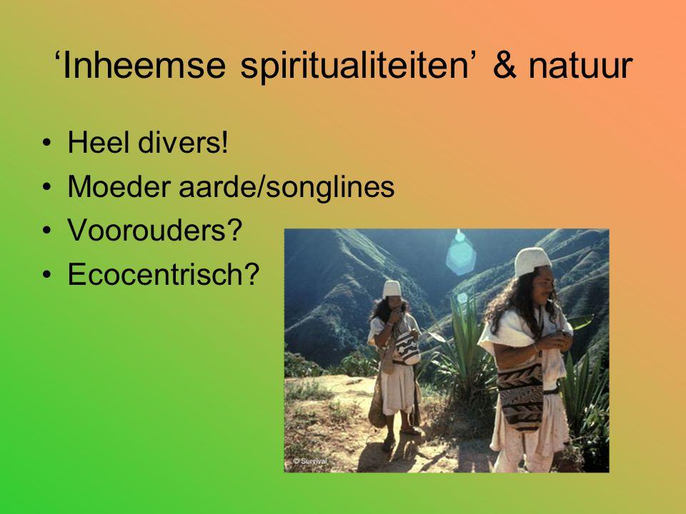 'Inheemse spiritualiteiten' & natuur Heel divers! Moeder aarde/songlines Voorouders? Ecocentrisch?