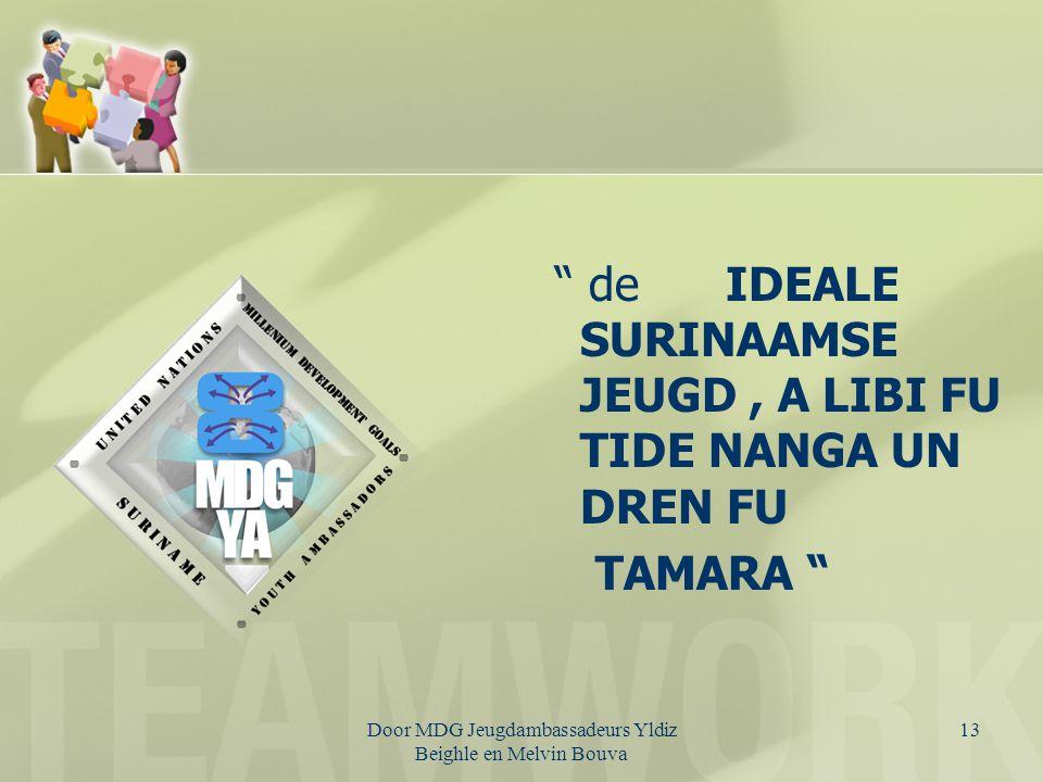 Door MDG Jeugdambassadeurs Yldiz Beighle en Melvin Bouva 14 Q's ????