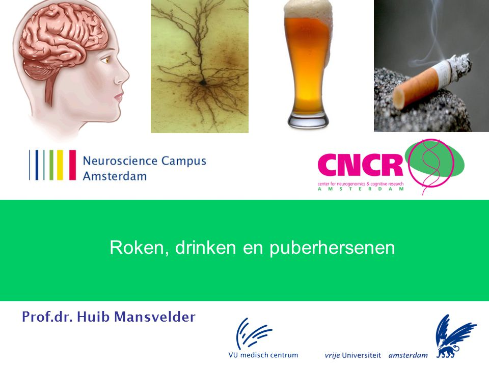 Prof.dr. Huib Mansvelder Roken, drinken en puberhersenen