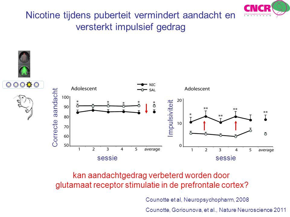 Nicotine tijdens puberteit vermindert aandacht en versterkt impulsief gedrag Counotte et al, Neuropsychopharm, 2008 Counotte, Goriounova, et al., Natu