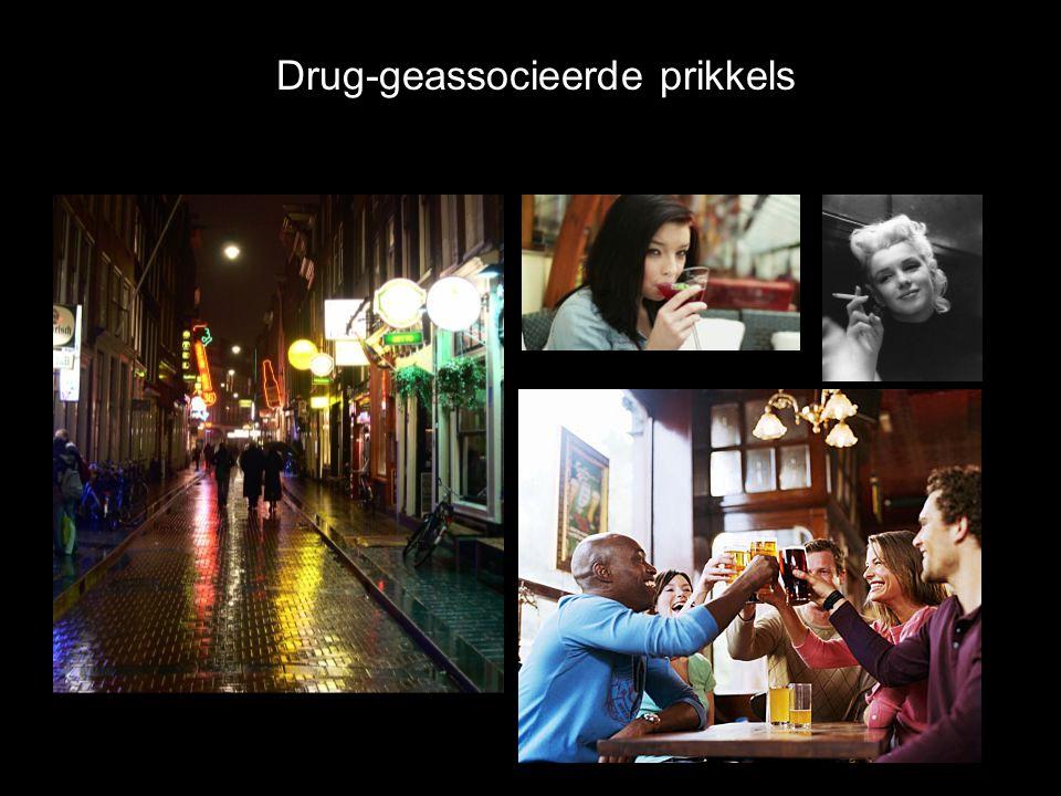 Drug-geassocieerde prikkels
