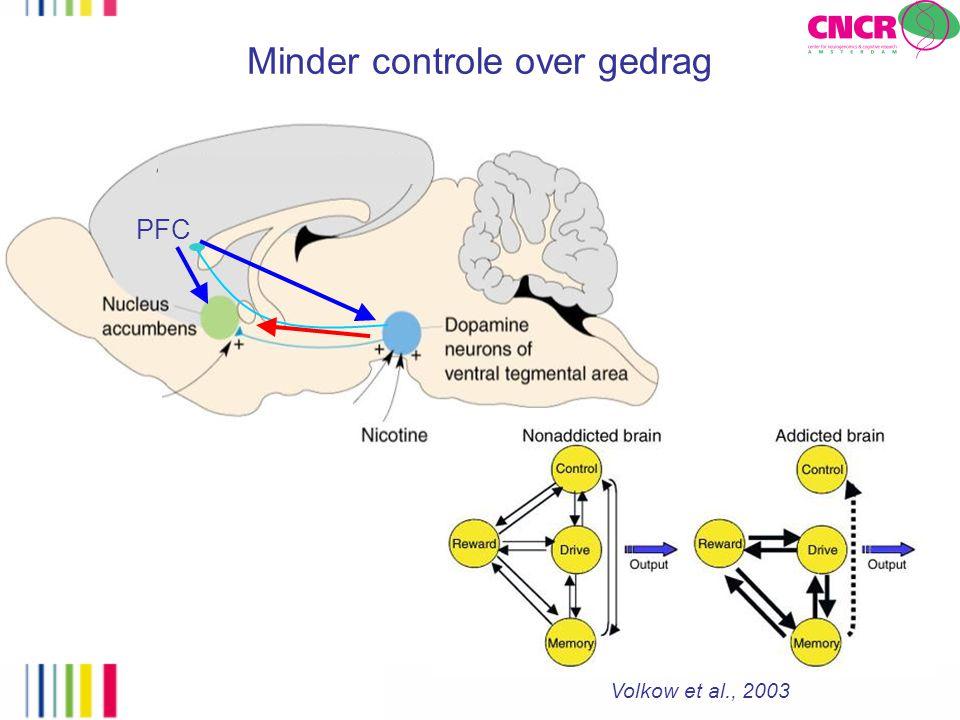 PFC Minder controle over gedrag Volkow et al., 2003