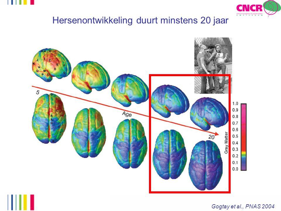 Hersenontwikkeling duurt minstens 20 jaar Gogtay et al., PNAS 2004