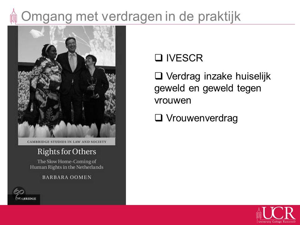 Omgang met verdragen in de praktijk  IVESCR  Verdrag inzake huiselijk geweld en geweld tegen vrouwen  Vrouwenverdrag