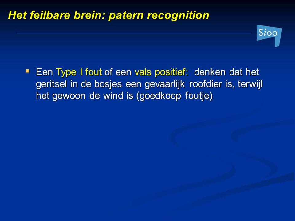  Een Type I fout of een vals positief: denken dat het geritsel in de bosjes een gevaarlijk roofdier is, terwijl het gewoon de wind is (goedkoop foutj