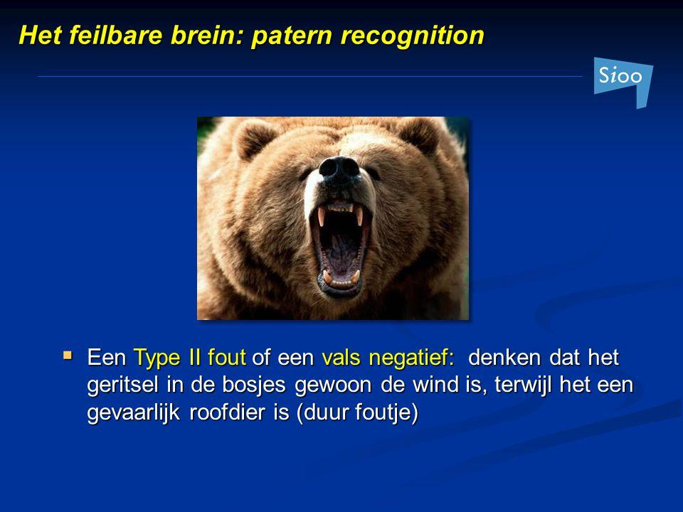  Een Type II fout of een vals negatief: denken dat het geritsel in de bosjes gewoon de wind is, terwijl het een gevaarlijk roofdier is (duur foutje)