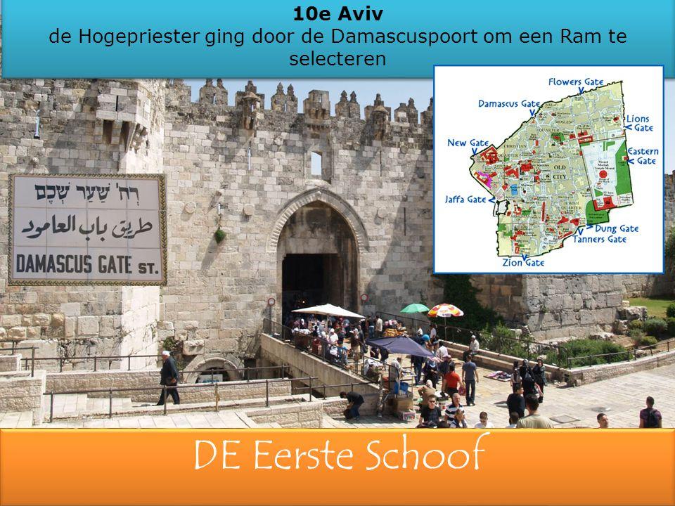 DE Eerste Schoof 10e Aviv de Hogepriester ging door de Damascuspoort om een Ram te selecteren