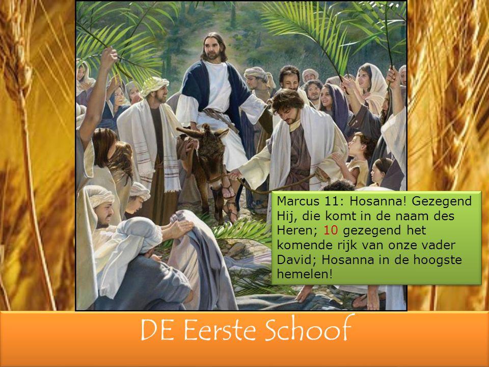 DE Eerste Schoof Marcus 11: Hosanna! Gezegend Hij, die komt in de naam des Heren; 10 gezegend het komende rijk van onze vader David; Hosanna in de hoo