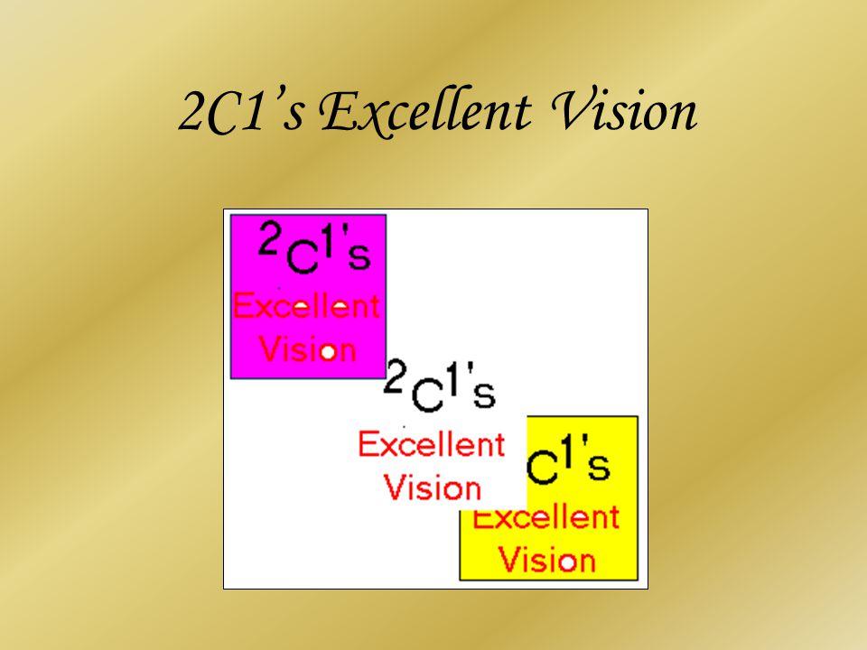 2C1's Excellent Vision