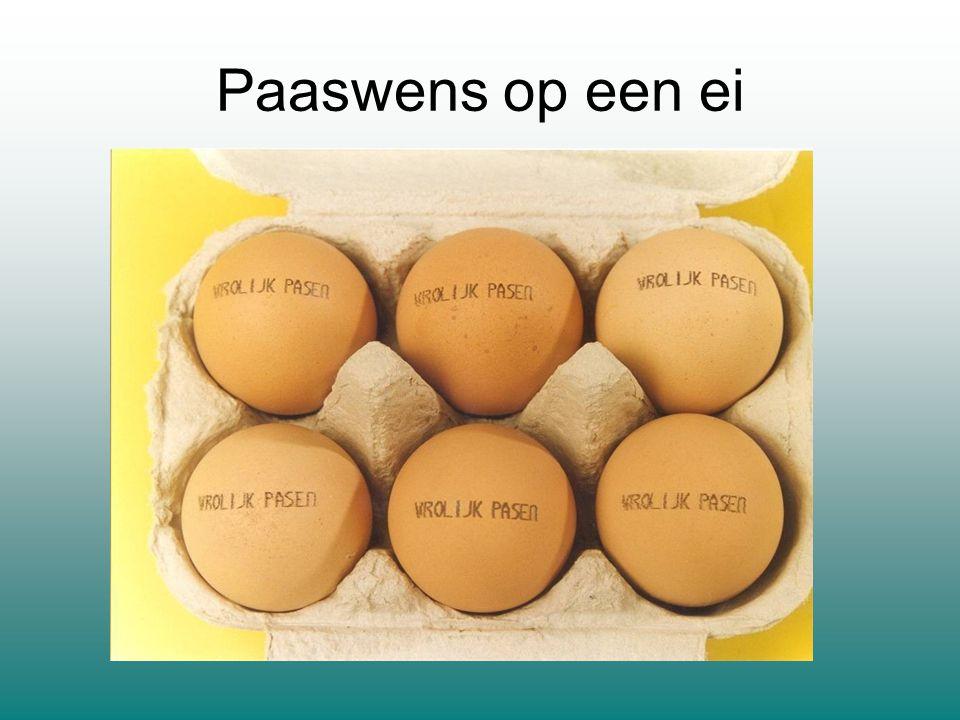 Paaswens op een ei
