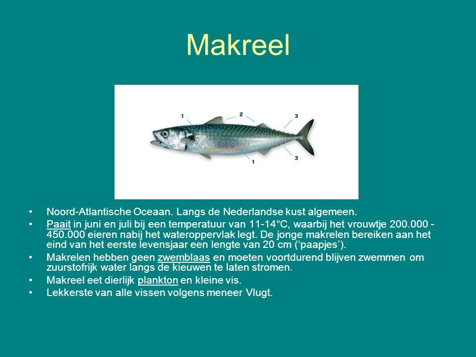 Makreel Noord-Atlantische Oceaan. Langs de Nederlandse kust algemeen. Paait in juni en juli bij een temperatuur van 11-14°C, waarbij het vrouwtje 200.