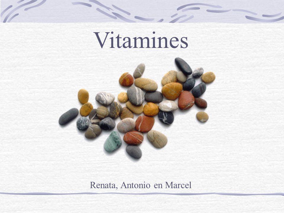 Vitaminen zijn stoffen die in kleine hoeveelheden nodig zijn voor allerlei processen in het lichaam, zoals groei en ontwikkeling, spijsverteringsfuncties en de regeling van celfuncties.