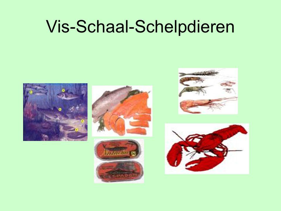 Vis-Schaal-Schelpdieren