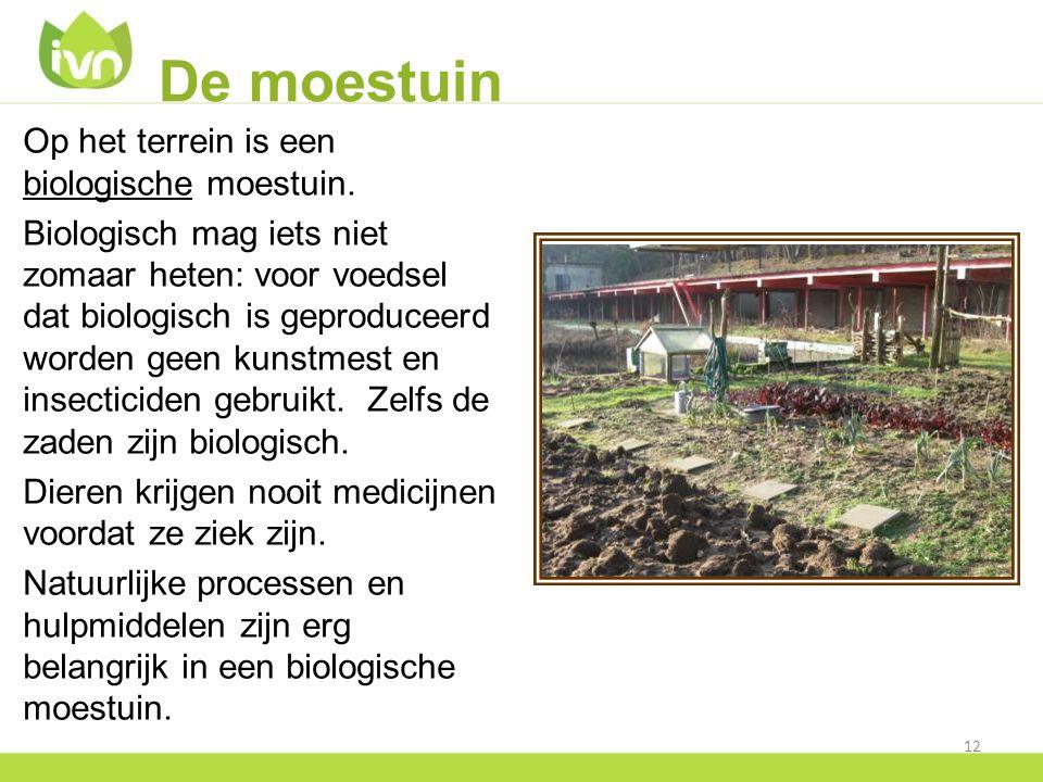 De moestuin Op het terrein is een biologische moestuin.