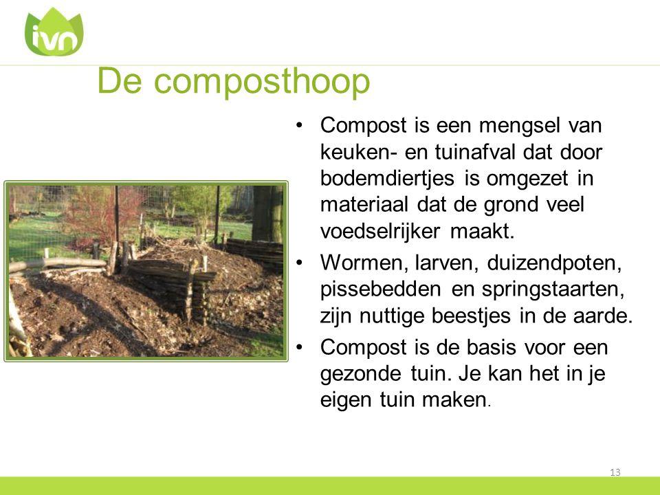 De composthoop Compost is een mengsel van keuken- en tuinafval dat door bodemdiertjes is omgezet in materiaal dat de grond veel voedselrijker maakt.