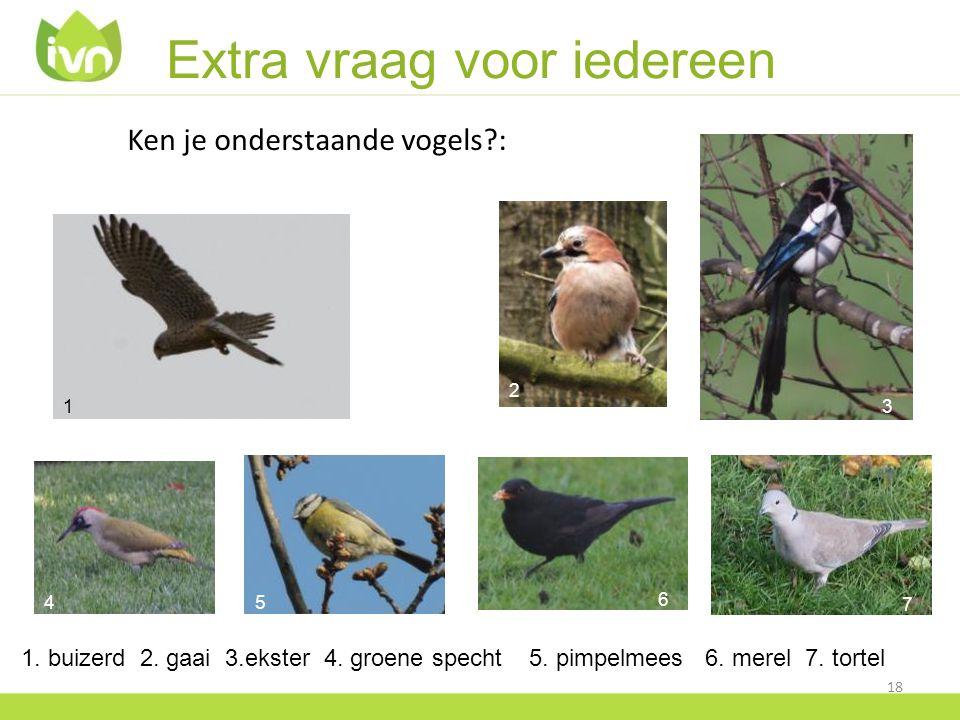 Extra vraag voor iedereen Ken je onderstaande vogels?: 18 1 6 45 7 3 2 1. buizerd 2. gaai 3.ekster 4. groene specht 5. pimpelmees 6. merel 7. tortel 2