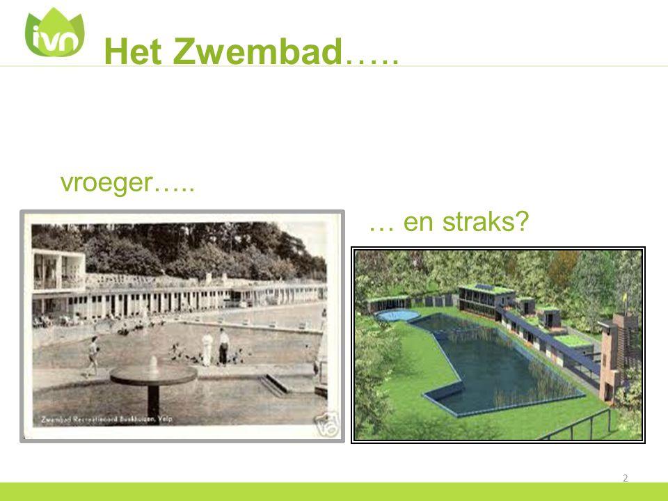 Het Zwembad….. Bodytekstregel arial 20 punten vroeger….. … en straks? 2