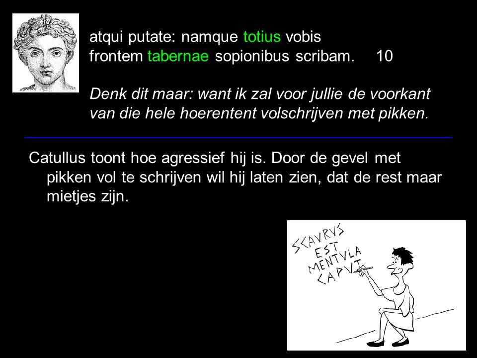 atqui putate: namque totius vobis frontem tabernae sopionibus scribam.10 Denk dit maar: want ik zal voor jullie de voorkant van die hele hoerentent volschrijven met pikken.